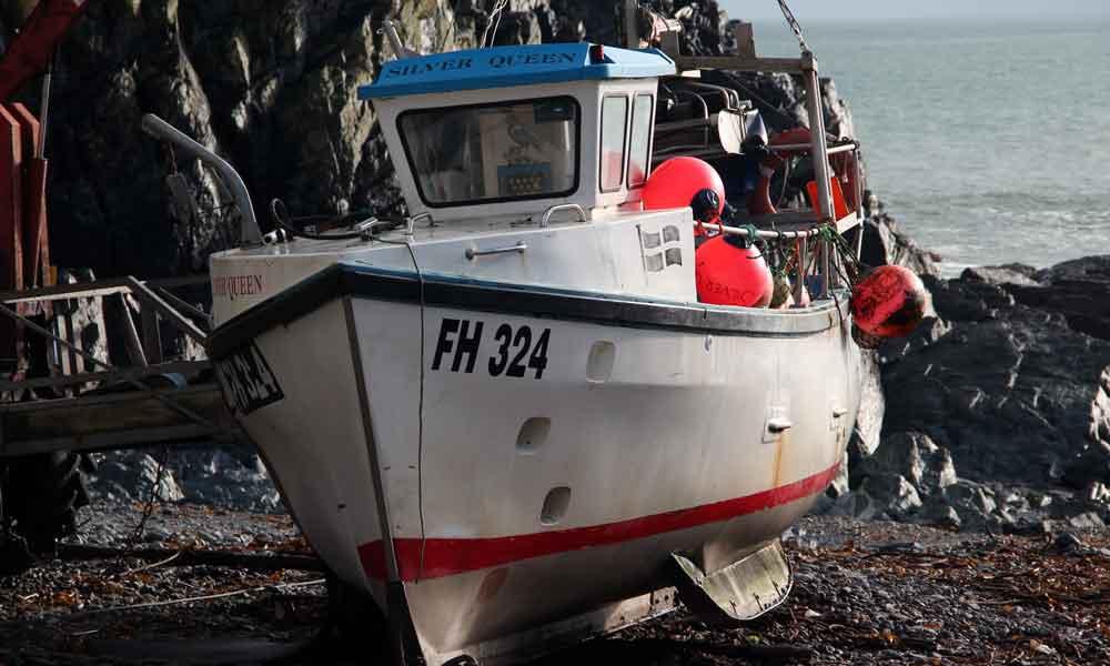 dating site for fishermen